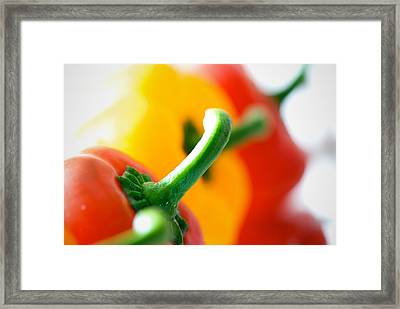 Perfect Peppers Framed Print by Lisa Knechtel