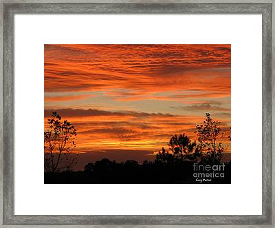 Perfection Framed Print by Greg Patzer