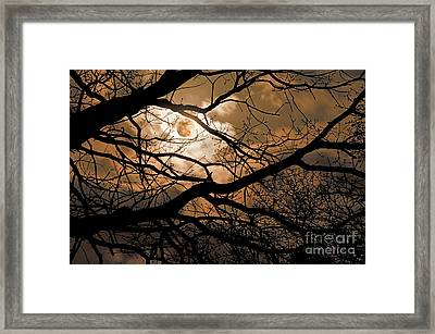 Perigee Moon In The Trees Framed Print by Tamyra Ayles