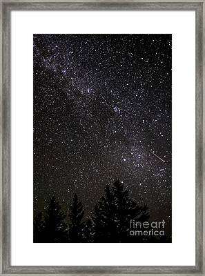 Perseid Meteor And Milky Way Framed Print by Thomas R Fletcher