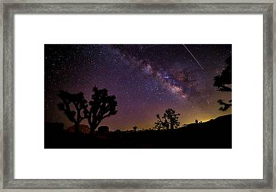 Perseid Meteor Over Joshua Tree Framed Print by Peter Tellone