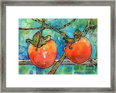Persimmons Of Provence Framed Print by Pat Katz