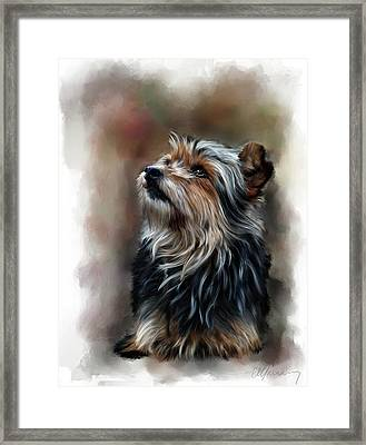 Pet Dog Portrait Framed Print by Michael Greenaway