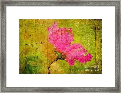 Petalia - 3033-11b Framed Print by Variance Collections