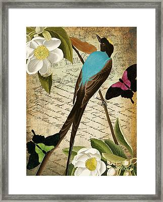 Petals And Wings II Framed Print by Mindy Sommers