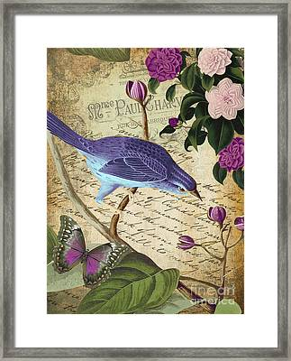 Petals And Wings Iv Framed Print by Mindy Sommers