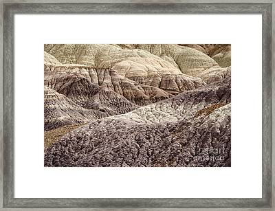 Petrified Forest National Park 2 Framed Print by Bob Christopher