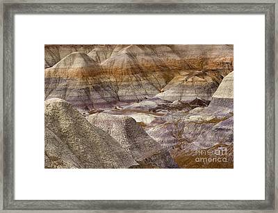 Petrified Forest National Park 4 Framed Print by Bob Christopher