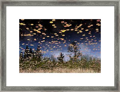 Phantom Lake Framed Print by Alex Levine
