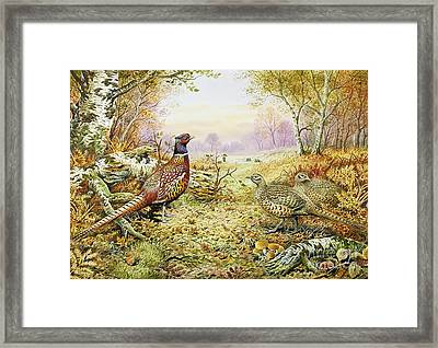 Pheasants In Woodland Framed Print by Carl Donner