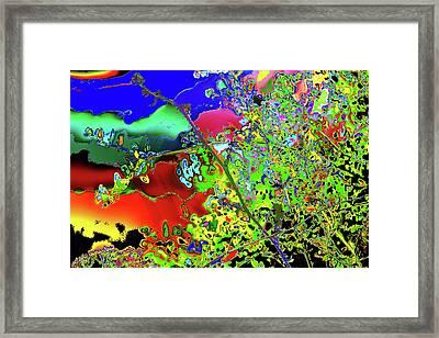 Photosynthesized Color Framed Print by Kenneth James