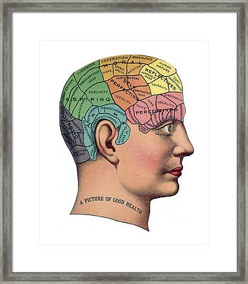 Phrenological Chart Framed Print by American School