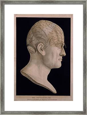 Phrenological Chart Of The Head Showing Framed Print by Everett