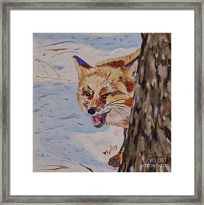 Phyllis Laughing Fox Framed Print by Phyllis Kaltenbach