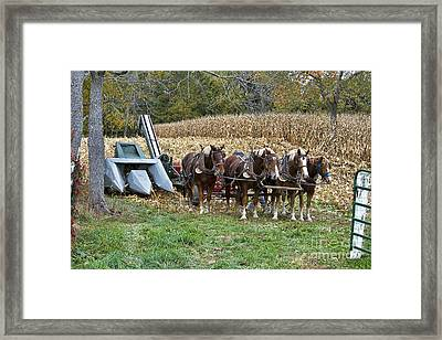 Pickers Near Shipshewana Framed Print by David Arment