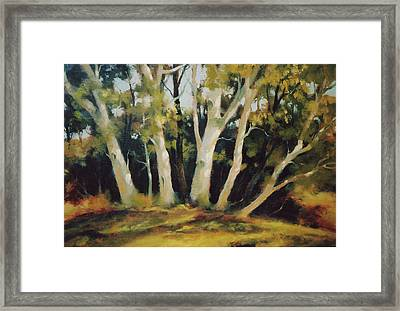 Picnic Place Framed Print by Ed Lucey