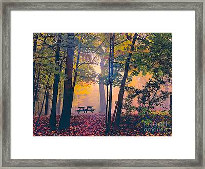 Picnic Table In The Autumn Woods Framed Print by Robert Gaines