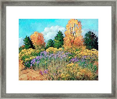 Picuris Framed Print by Donna Clair