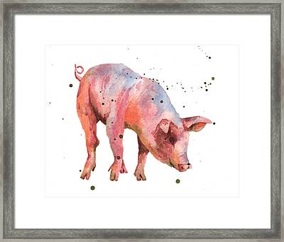 Pig Painting Framed Print by Alison Fennell