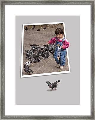 Pigeon Control Problem - Child Feeding Pigeons Framed Print by Mitch Spence