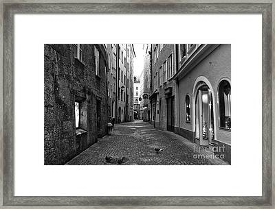 Pigeons On The Street In Salzburg Framed Print by John Rizzuto