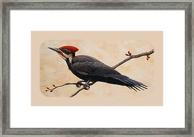 Pileated Woodpecker Phone Case Framed Print by Crista Forest