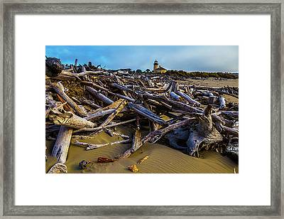 Piles Of Driftwood Framed Print by Garry Gay