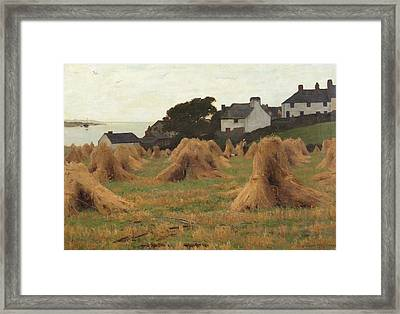 Piles Of Sheafes Framed Print by Joshua Anderson