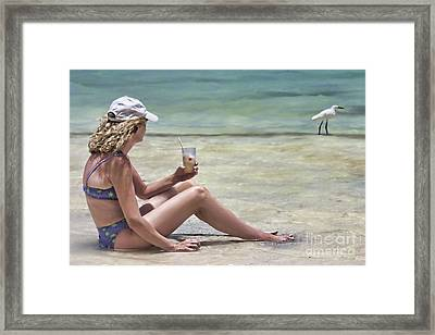 Pineapple Daiquiri Framed Print by John Edwards