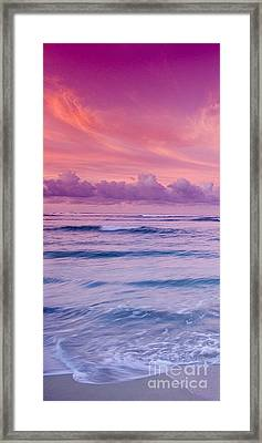 Pink Bliss -  Part 1 Of 3 Framed Print by Sean Davey