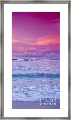 Pink Bliss -  Part 3 Of 3 Framed Print by Sean Davey
