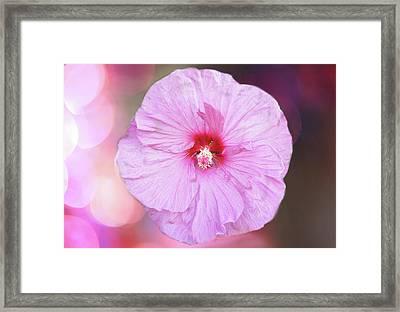 Pink Blossom Framed Print by Art Spectrum