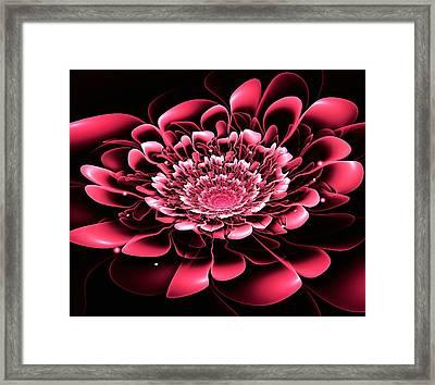 Pink Flower Framed Print by Anastasiya Malakhova