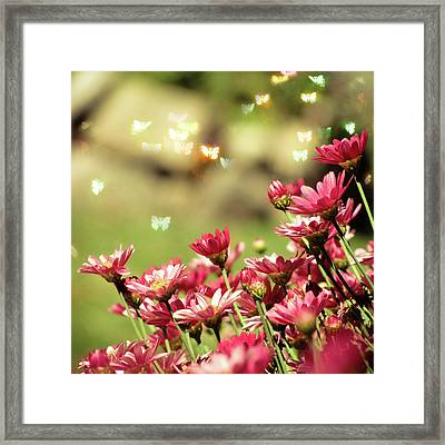 Pink Flower Framed Print by RoxiRosita