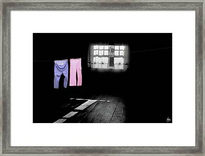 Pink Flowers And A Washline Framed Print by Wayne King