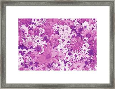 Pink Flowers Framed Print by JQ Licensing