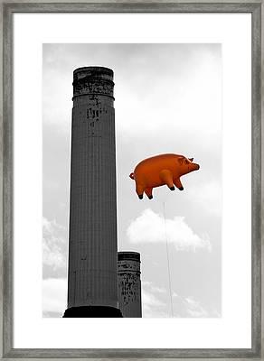 Pink Floyds Pig Framed Print by Dawn OConnor