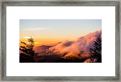 Pink Fog At Clingmans Dome Framed Print by Shelby Young