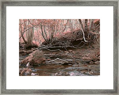 Pink Forest Framed Print by Svetlana Sewell