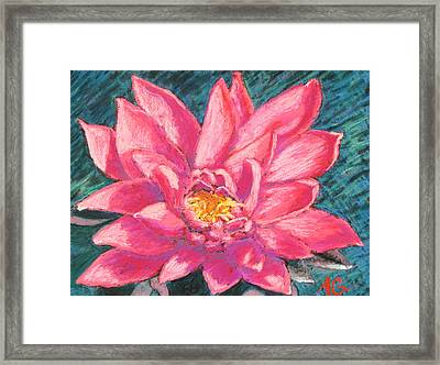 Pink Lotus Framed Print by Abbie Groves
