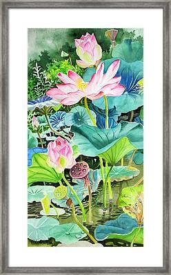 Pink Lotus  Framed Print by Vishwajyoti Mohrhoff