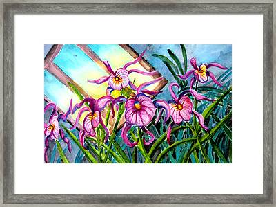Pink Orchids Under Skylight Framed Print by Helen Kern