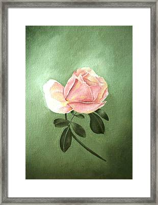 Pink Peach 1 Rose Painting Flower Painting Art Print Framed Print by Sally Holt