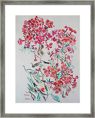 Pink Phloxes Framed Print by Vitali Komarov
