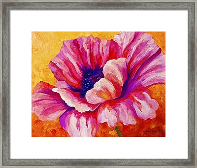 Pink Poppy Framed Print by Marion Rose