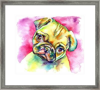 Pink Pug Framed Print by Christy  Freeman