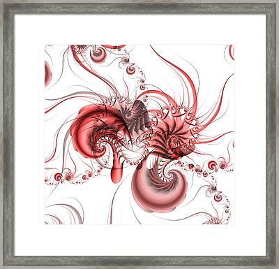 Pink Shrimp Framed Print by David April