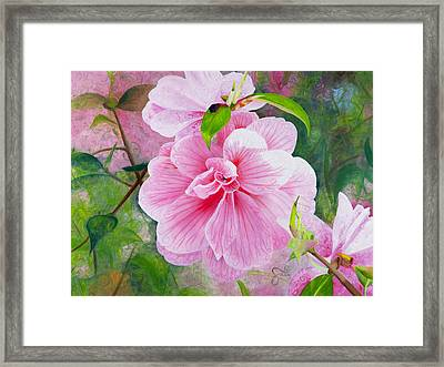 Pink Swirl Garden Framed Print by Shelley Irish