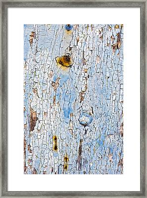 Pintorust Framed Print by Tim Gainey