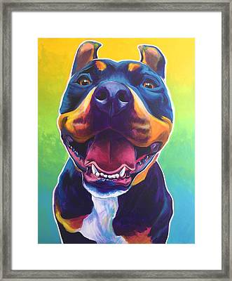 Pit Bull - Maya Framed Print by Alicia VanNoy Call